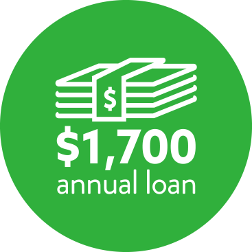 Annual Loan Icon